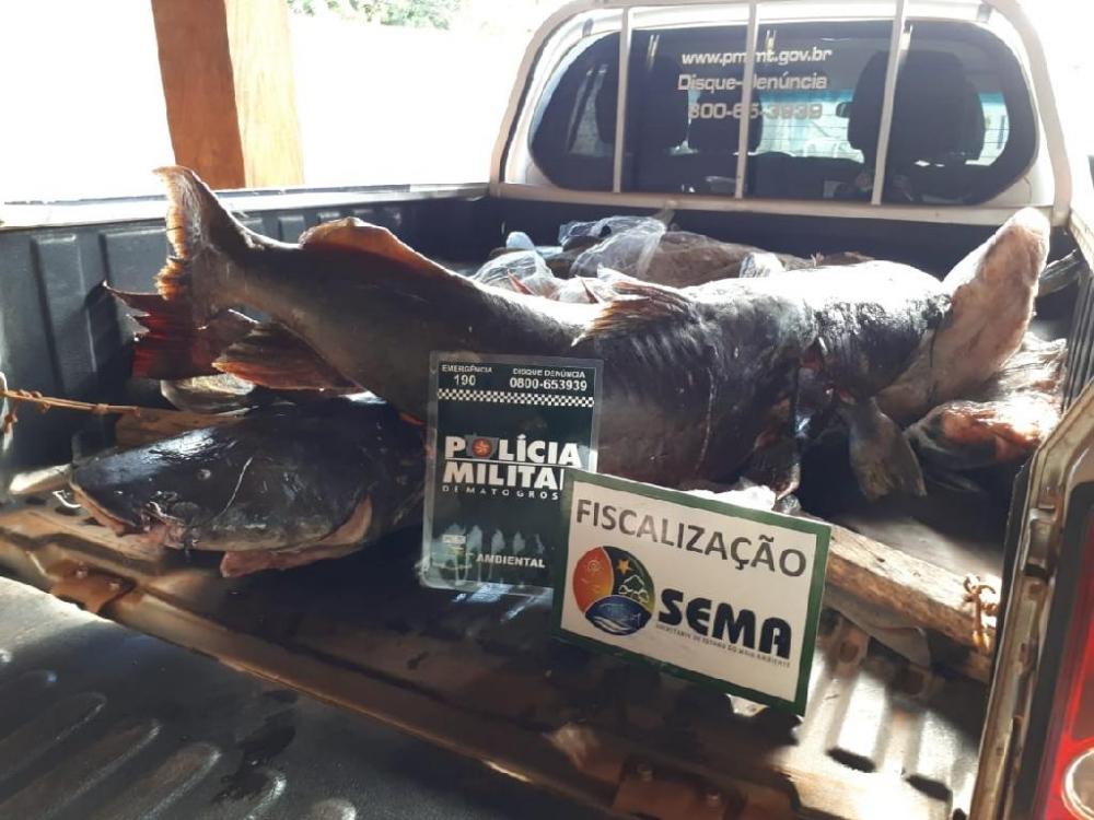 Sema apreende mais de 200 kg de pescado e apetrechos de pesca ilegal