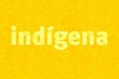 MPF repudia veiculação de áudio falso sobre conflito entre indígenas e caminhoneiros