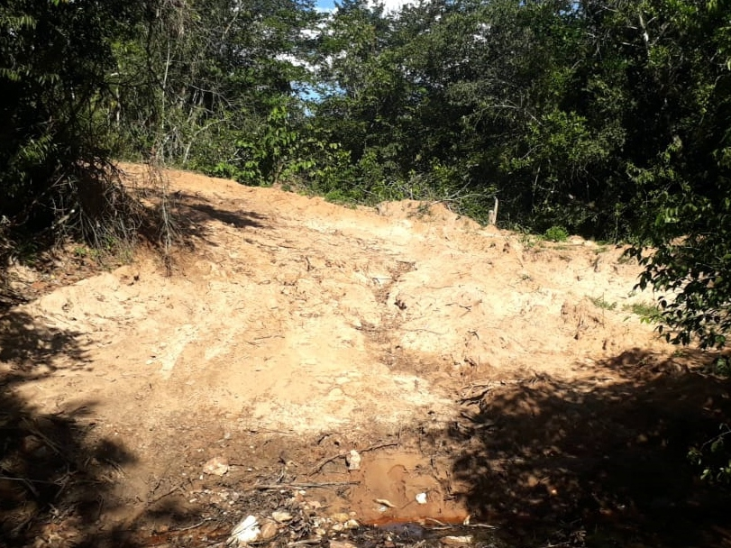 Mesmo com pandemia, MPMT combate desmatamento ilegal