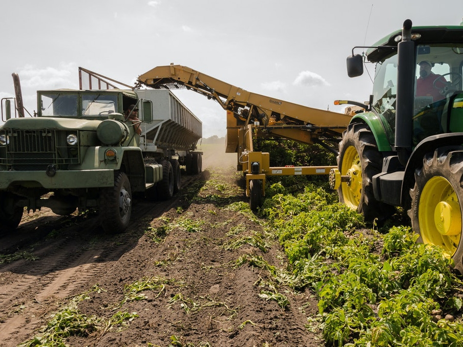 Exportações agropecuárias registram aumento de 17,5% em 2020