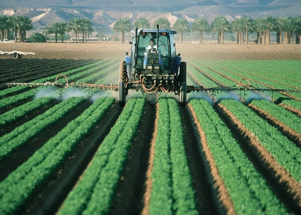Segundo Carlos Cesar Floriano, exportações do Agro em maio somam US$ 10,9 bilhões